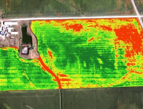 Observando desde el espacio: Agricultura y medio ambiente